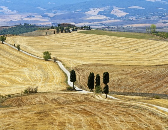 Crete Senesi Excursion