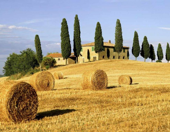 September events in Siena