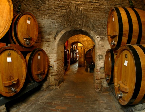 Winery tours and wine tastings in Siena