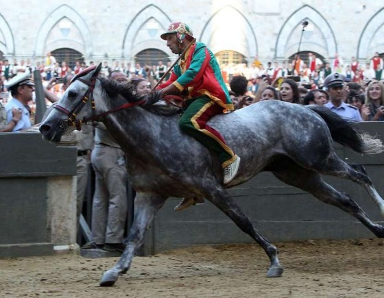 Siena and the Palio: the origins of Contrada del Drago